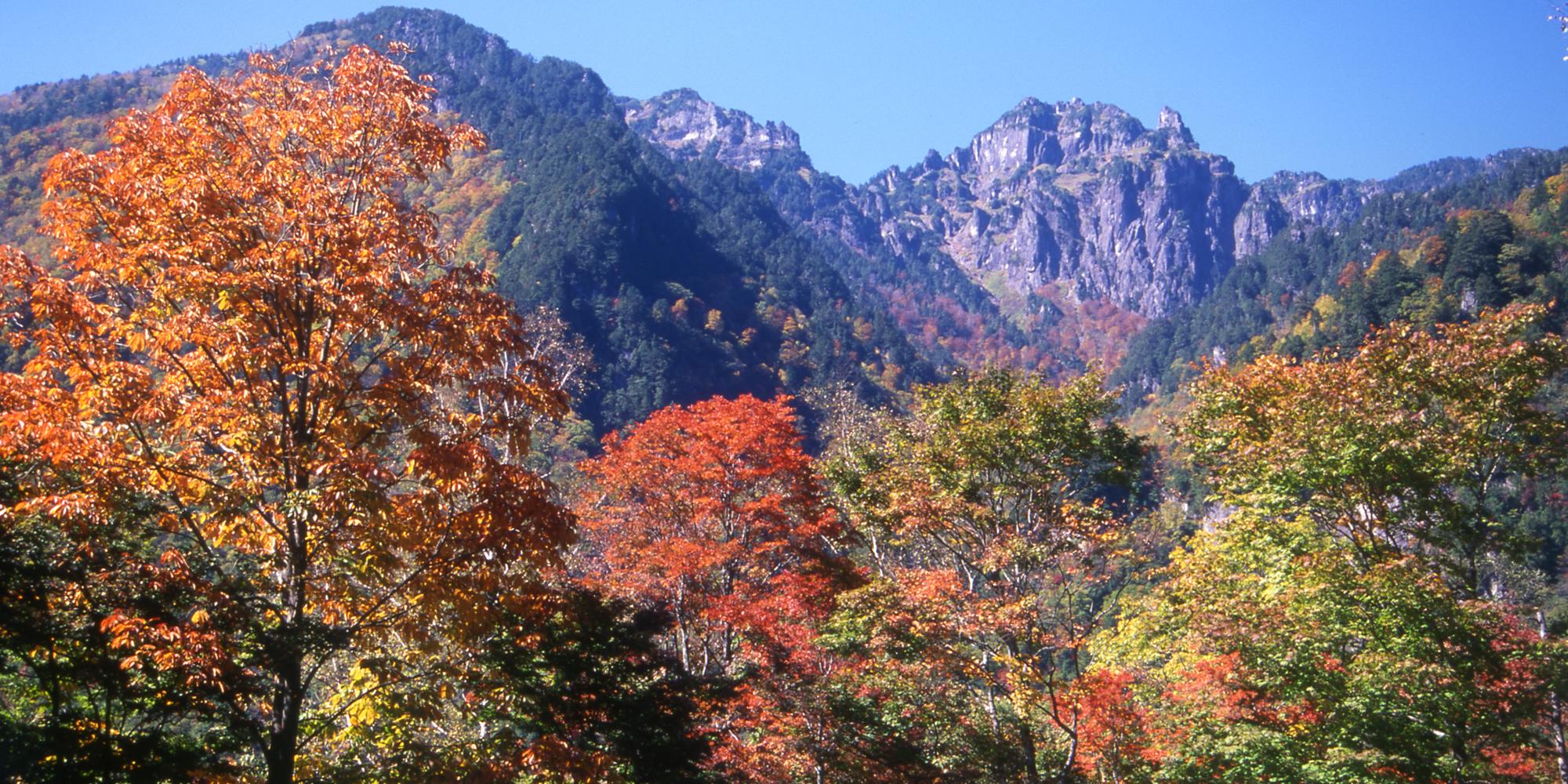 高原の澄んだ空気と清廉な水